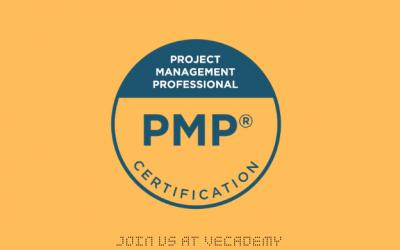 Professionnel en gestion de projet (PMP)